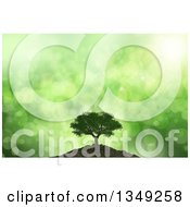 Clipart Of A 3d Mature Tree On A Hill Over Green Flares And Rays Royalty Free Illustration