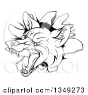 Clipart Of A Black And White Vicious Fox Breaking Through A Wall Royalty Free Vector Illustration