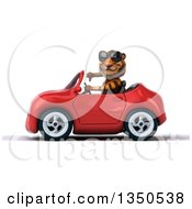 Clipart Of A 3d Tiger Wearing Sunglasses Giving A Thumb Down And Driving A Red Convertible Car To The Left Royalty Free Illustration