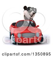 Clipart Of A 3d Business Panda Wearing Sunglasses And Driving A Red Convertible Car Royalty Free Illustration