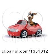 Clipart Of A 3d Kangaroo Wearing Sunglasses Giving A Thumb Down And Driving A Red Convertible Car To The Left Royalty Free Illustration