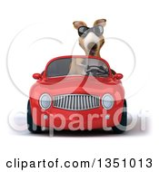Clipart Of A 3d Kangaroo Wearing Sunglasses And Driving A Red Convertible Car Royalty Free Illustration