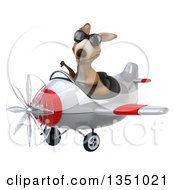 Clipart Of A 3d Kangaroo Aviator Pilot Wearing Sunglasses Giving A Thumb Down And Flying A White And Red Airplane To The Left Royalty Free Illustration by Julos
