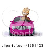 Clipart Of A 3d Camel Driving A Purple Convertible Car Royalty Free Illustration