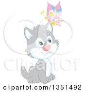 Clipart Of A Cute Gray And White Kitten Sitting With A Butterfly On His Ear Royalty Free Vector Illustration