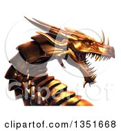 3d Metal Golden Dragon Head