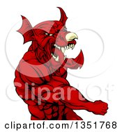 Clipart Of A Muscular Fighting Red Welsh Dragon Man Punching Royalty Free Vector Illustration by AtStockIllustration
