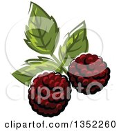 Clipart Of Cartoon Blackberries And Leaves Royalty Free Vector Illustration