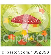 Clipart Of A Fly Agaric Mushroom With Autumn Leaves In A Forest Royalty Free Vector Illustration by Pushkin