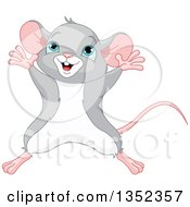 Clipart Of A Cute Happy Gray And White Mouse Jumping Royalty Free Vector Illustration