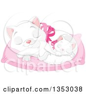 Cute White Kitten Sleeping With Its Mother On A Cat Bed Pillow