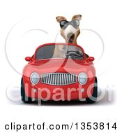 Clipart Of A 3d Kangaroo Wearing Sunglasses And Driving A Red Convertible Car On A White Background Royalty Free Vector Illustration