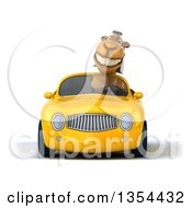 Clipart Of A 3d Arabian Camel Driving A Yellow Conertible Car On A White Background Royalty Free Vector Illustration