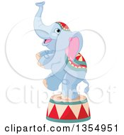 Cute Baby Circus Elephant Standing On One Leg On A Platform