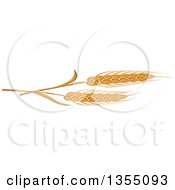 Clipart Of Cartoon Golden Wheat Royalty Free Vector Illustration