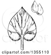Clipart Of A Black And White Sketched Veined Leaf And Water Drops Royalty Free Vector Illustration by Vector Tradition SM