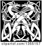 White Celtic Dragons Knot On Black