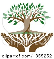 Clipart Of A Tree With Green Leaves White Roots And Uplifted Hands Royalty Free Vector Illustration