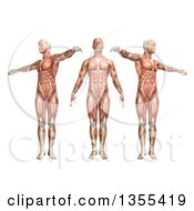 Clipart Of A 3d Anatomical Man With Visible Muscles Showing Trunk Rotation On A White Background Royalty Free Illustration
