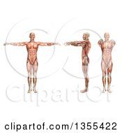 Clipart Of A 3d Anatomical Man With Visible Muscles Showing Shoulder Horizontal Abduction And Adduction On A White Background Royalty Free Illustration