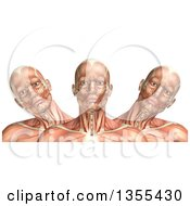 Clipart Of A 3d Anatomical Man With Visible Muscles Showing Cervical Lateral Bending On A White Background Royalty Free Illustration