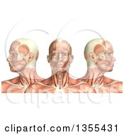 Clipart Of A 3d Anatomical Man With Visible Muscles Showing Cervical Rotation On A White Background Royalty Free Illustration