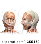 Clipart Of A 3d Anatomical Man With Visible Muscles Showing Mandible Depression From The Front And Side On A White Background Royalty Free Illustration