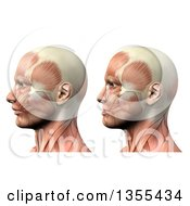 Clipart Of A 3d Anatomical Man With Visible Muscles Showing Mandible Protusion And Retrusion On A White Background Royalty Free Illustration