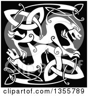 White Celtic Knot Dragons On Black