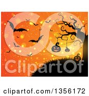 Halloween Background Of Illuminated Silhouetted Jackolantern Pumpkins Hanging From A Tree Against An Orange Bokeh Burst Sky With Vampire Bats