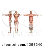 Clipart Of A 3d Anatomical Man With Visible Muscles Showing Shoulder Abduction And Horizontal Abduction On A White Background Royalty Free Illustration