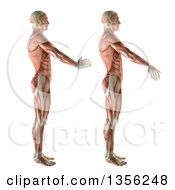 Clipart Of A 3d Anatomical Man With Visible Muscles Showing Wrist Radial Deviation And Ulnar Deviation On A White Background Royalty Free Illustration by KJ Pargeter