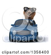 Clipart Of A 3d Brown Business Bear Wearing Sunglasses And Driving A Blue Convertible Car On A White Background Royalty Free Illustration