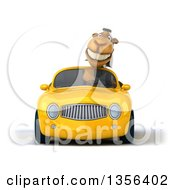 Clipart Of A 3d Arabian Business Camel Driving A Yellow Convertible Car On A White Background Royalty Free Illustration