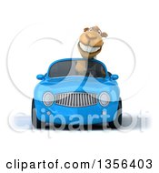 Clipart Of A 3d Business Camel Driving A Blue Convertible Car On A White Background Royalty Free Illustration