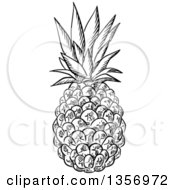Clipart Of A Black And White Sketched Pineapple Royalty Free Vector Illustration