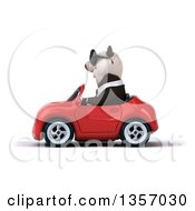 Clipart Of A 3d Business Panda Wearing Sunglasses And Driving A Red Convertible Car On A White Background Royalty Free Illustration by Julos
