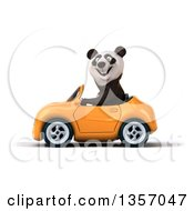 Clipart Of A 3d Panda Driving An Orange Convertible Car On A White Background Royalty Free Illustration