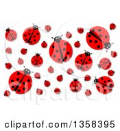 Clipart Of A Background Of A Ladybugs And Shadows On White Royalty Free Illustration