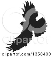 Clipart Of A Black Silhouetted Eagle In Flight Royalty Free Vector Illustration