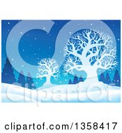 Clipart Of A Snowy Winter Night Background With Silhouetted Bare Trees And Evergreens Royalty Free Vector Illustration