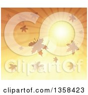 Clipart Of A Background Of A Golden Sunset Sun Shining In The Sky With Autumn Leaves Royalty Free Vector Illustration by visekart