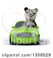 Clipart Of A 3d Bespectacled Panda Driving A Green Convertible Car On A White Background Royalty Free Illustration