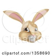 Clipart Of A Happy Tan Easter Bunny Rabbit Face Royalty Free Vector Illustration by AtStockIllustration