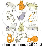 Sketched Cats In Different Poses