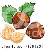 Clipart Of Cartoon Hazelnuts And Leaves Royalty Free Vector Illustration