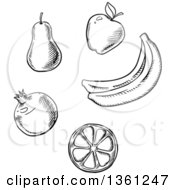 Clipart Of Black And White Sketched Fruits Royalty Free Vector Illustration by Vector Tradition SM