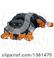 Clipart Of A Cute Rottweiler Dog Resting His Head Between His Paws Royalty Free Vector Illustration