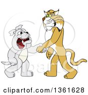 Clipart Of A Bobcat School Mascot Character Shaking Hands With A Bulldog Symbolizing Acceptance And Introduction Royalty Free Vector Illustration by Toons4Biz