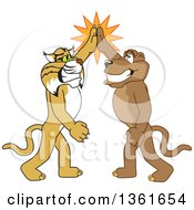 Bobcat And Cougar School Mascot Characters High Fiving Symbolizing Teamwork And Sportsmanship by Toons4Biz